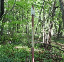 słowackie oznaczenie punktu triangulacyjnego-w okolicach szczytu