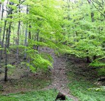 Przed nami droga na szczyt, robi się stromo