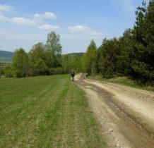 Zielonym szlakiem idziemy do Bielicznej