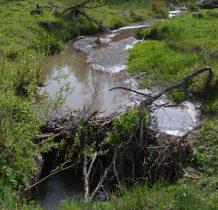 potok przechodzi na druga stronę drogi