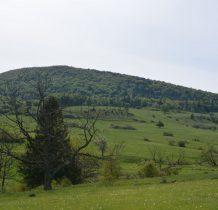 Jaworzyna Konieczniańska=w dolince wije się Regetówka