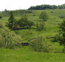 """szkoda,że podejść nie można-""""pastuch""""otacza cały teren"""