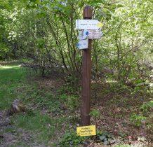beskid-niski-regietow-2020-05-23_09-50-34