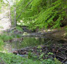 beskid-niski-regietow-2020-05-23_11-49-49