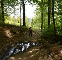 beskid-niski-regietow-2020-05-23_12-45-37