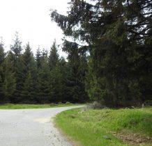 przed przełęcza odbijamy w lewo żółtym szlakiem