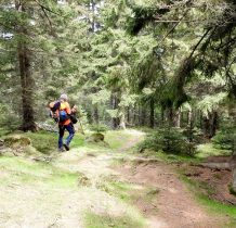 ze sczytu schodzimy czerwonym szlakiem w kierunku Kobylicznego Duktu