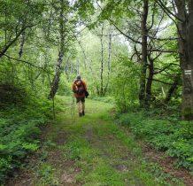 poczatkowo błotnista ścieżka prowadzi dalej lasem