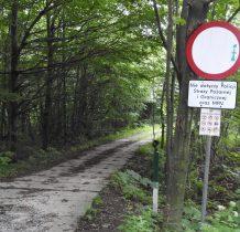 ta droga można dojść do wioski