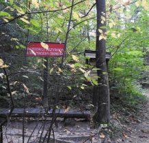 Rezerwat Tysiaclecia na Cergowej