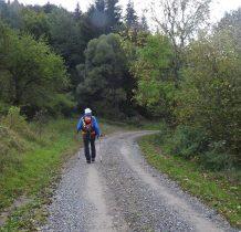 poczatkowo utwardzona droga idziemy szlakiem żółtym w kierunku Wilszni