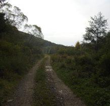 droga do Wilszni