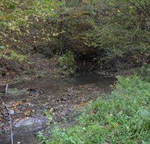 potok utworzył małe jeziorko