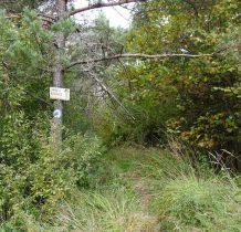 na granicy lasu ściezka do chatki oznaczona