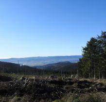 Wyrab lasu pozwala podziwiać widoki