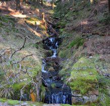 Kraina mchu i bystrych potoków