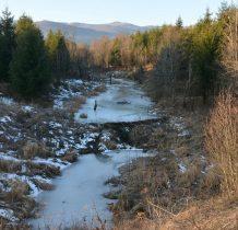bobry tworza rozlewiska na małych potokach zasilajacych San