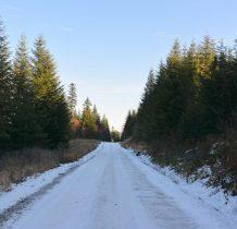 w zacienionych miejscach droga pokryta lodom