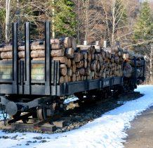 wagoniki dawnej kolejki leśnej