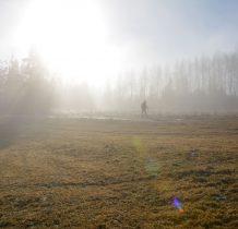 Obraz taki nierealny...słońce usidlone w oparach mgły
