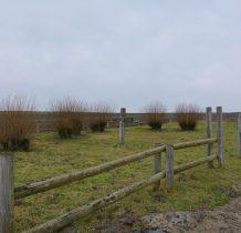 Malhowice-cmentarz wojenny z okresu I wojny światowej