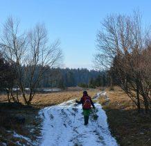 schodzimy ze szlaku czerwonego i idziemy widoczna droga równolegle do potoku