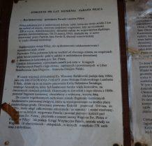 pilica-2-2020-12-29_10-40-33