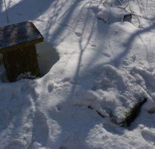śnieg przykrył