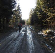 dalej błotnistą leśną drogą