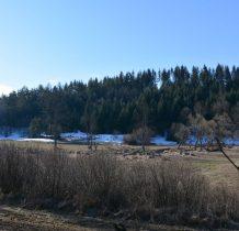 """górny bieg rzeki na długości ok.5km chroniony jest rezerwatem przyrody """"Źródliska Jasiołki""""-dokąd idziemy"""