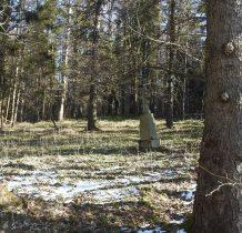 na skraju lasu przy polanie-teren cmentarza młodszego