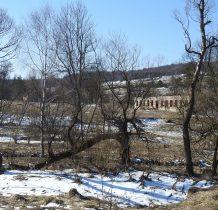 ruiny strażnicy WOP,tej nowszej, zbudowanej w 1948 roku(starą zniszcyła UPA),koszary i stajnia dla koni