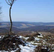 tą część Beskidu Niskiego Słowacy nazywają Laborecka vrchovina