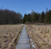 tutaj w 2011 roku płonęły torfowiska i las