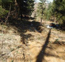 jak nie ma drzew-to droga rozjeżdżona i błoto po łydki