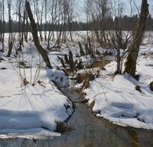 do Sokolik nie powrócił już żaden rdzenny mieszkaniec