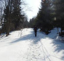 droga z płyt się skończyła-idziemy ścieżką-po sladach pograniczników