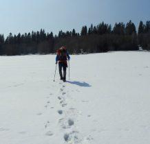 odnajdujemy żółty szlak koński,którym będziemy próbowali dojść do Bukowca-przed nami 6km walki z topniejącym śniegiem