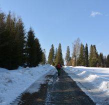droga biegnie od Bukowca aż do Tarnawy Niżnej