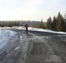 po 1,5 godziny docieramy na Borsuczyny-tutaj odchodzi droga w kierunku Tarnawy Wyżnej-torfowiska