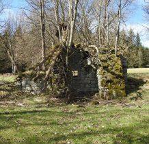 w otoczeniu starych drzew