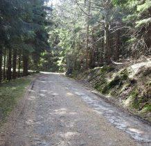 dochodzimy do Drogi Stanisława-dawna  Wrede Weg-z lat trzydziestych XX wieku