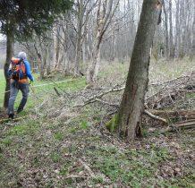 łąki i lasy ogrodzone-albo drut kolczasty albo wysoka siatka