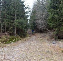 z lasu wychodzimy na drogę leśną,którą szliśmy