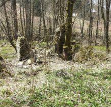 przy drodzie liczne kamienne ruiny dawnych budynków