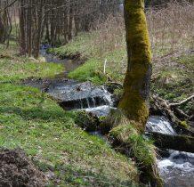 schodzimy ze szlaku i wzdłuż potoku zasilającego Dziką Orawe idziemy starą drogą przez wieś