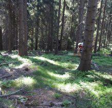 i trochę dalej w lesie za wzniesieniem dostrzegamy ruiny kaplicy Marii Wspomożycielki