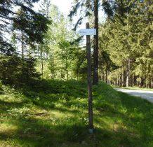od kapliczki schodzimy do zielonego szlaku i na wyskości skrzyżowania z Piaszczystą Drogą jest oznaczona ścieżka prowadząca do ruin Fortu Wilhelma