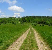 ścieżka okazała się widoczną drogą-przed nami Kościelnica