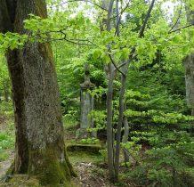 na granicy lasu tuż obok szlaku-krzyż pańszczyźniany